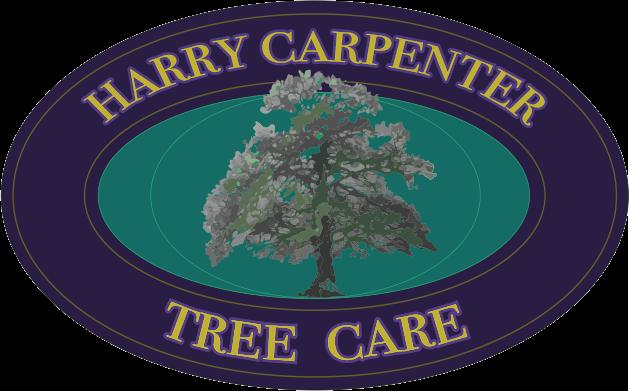 BNI Sutton member - Harry Carpenter Tree Care