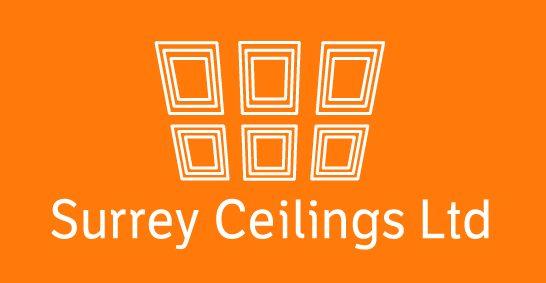 BNI Sutton Member - Surrey Ceilings